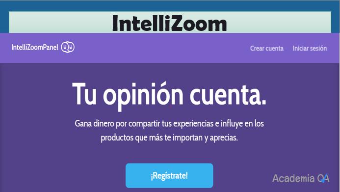 intellizoom